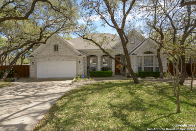 San Antonio Single Family Home New: 2203 Tarpley St