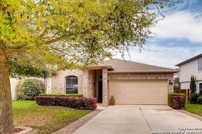 San Antonio TX Single Family Home New: $189,995