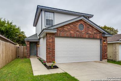 San Antonio Single Family Home New: 9530 Swans Xing