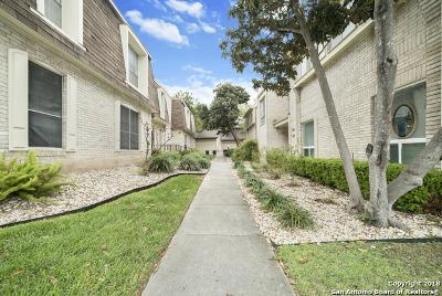 San Antonio Condo/Townhouse New: 3427 Turtle Village St #3427