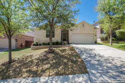 New Braunfels Single Family Home New: 737 San Gabriel Loop