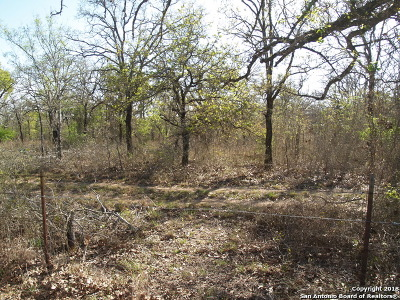 Guadalupe County Residential Lots & Land For Sale: Lot 4 Cross Rd