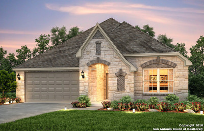 Helotes Single Family Home For Sale: 10830 Tansy Canyon