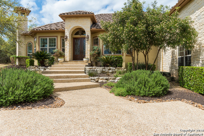 Boerne Single Family Home For Sale: 462 Augusta