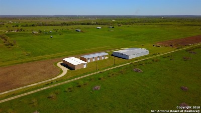 Guadalupe County Farm & Ranch For Sale: 4545 Fm 775