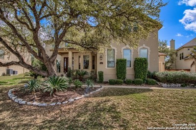 San Antonio Single Family Home For Sale: 23822 Spring Scent