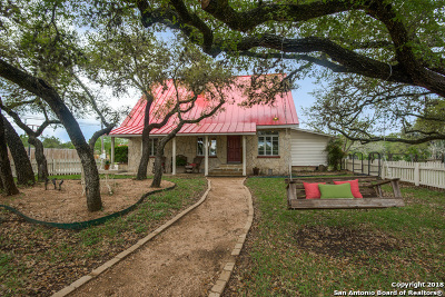 Boerne Single Family Home For Sale: 309 Plant Ave