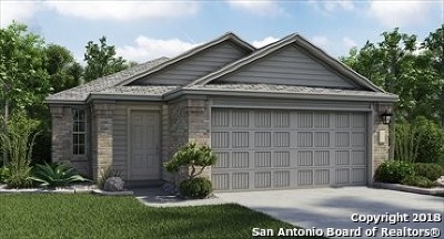 New Braunfels Single Family Home For Sale: 2336 Arctic Warbler