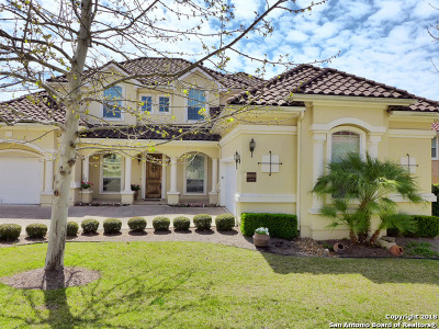The Dominion Single Family Home For Sale: 24722 Ellesmere