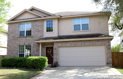 San Antonio TX Single Family Home Back on Market: $244,999