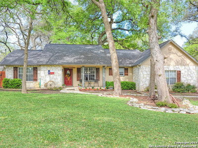 Boerne Single Family Home For Sale: 108 Blue Heron Trail