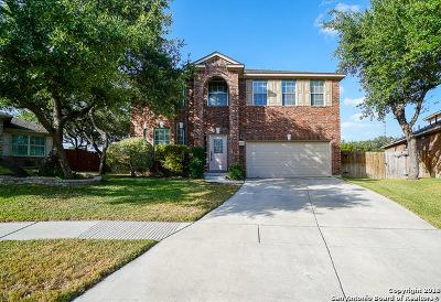 San Antonio Single Family Home For Sale: 2338 Dewey Pt