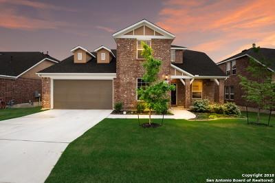 Single Family Home For Sale: 2802 Sueno Pt
