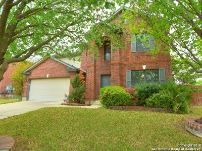 Travis County Single Family Home For Sale: 404 Red Tailed Hawk Dr
