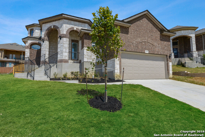 Bexar County Single Family Home For Sale: 11203 Butterfly Bush