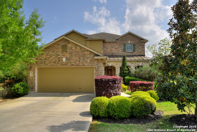 Boerne Single Family Home For Sale: 813 W San Antonio Ave