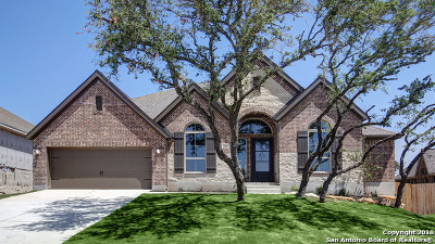Boerne Single Family Home Back on Market: 123 Boulder Creek