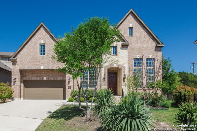 San Antonio Single Family Home For Sale: 2302 Dunmore Hill