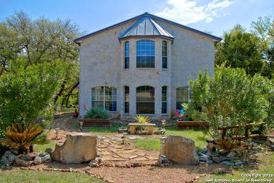 Canyon Lake Single Family Home For Sale: 850 La Paloma Dr