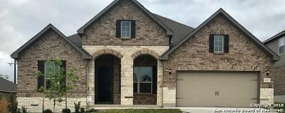 San Antonio Single Family Home For Sale: 8919 Monument Parke