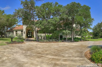 Boerne Single Family Home For Sale: 28 Swede Springs