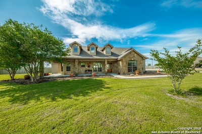Guadalupe County Single Family Home For Sale: 1765 Link Rd