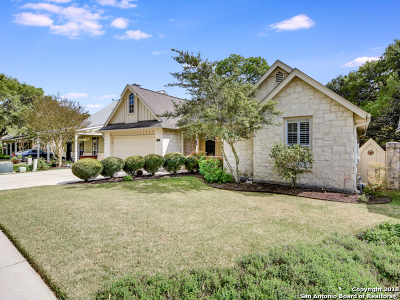 Kendall County Single Family Home For Sale: 117 Village Cove