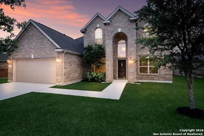 Bexar County Single Family Home For Sale: 4631 Amos Pollard