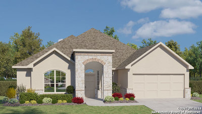 New Braunfels Single Family Home For Sale: 1915 Gibraltar