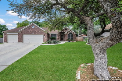 Schertz Single Family Home For Sale: 1313 Arroyo Loma