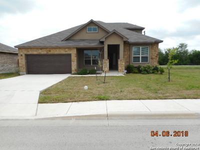 Single Family Home For Sale: 517 Briar Lane