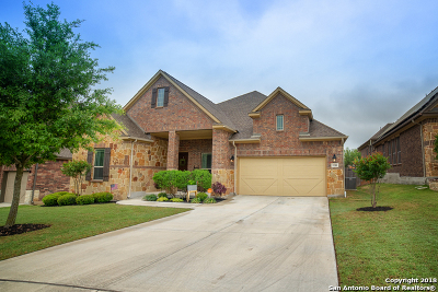 Bexar County Single Family Home For Sale: 5311 Osprey Oak