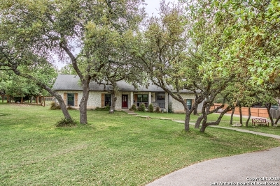 Boerne Single Family Home New: 27018 Boerne Forest