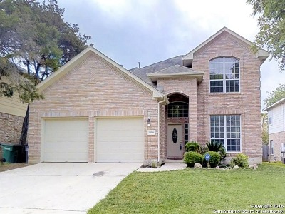 San Antonio Single Family Home New: 15046 Stonetower Dr