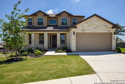 Alamo Ranch Single Family Home For Sale: 12818 Ray Roberts