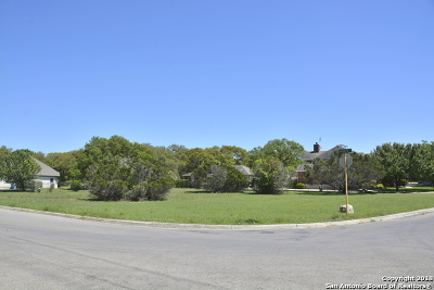 Residential Lots & Land For Sale: 29322 Saddle Song