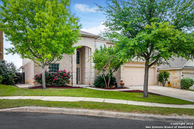 Bexar County Single Family Home For Sale: 12243 Dewitt Cove