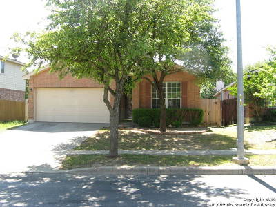 Helotes Single Family Home New: 14307 Sonora Bend