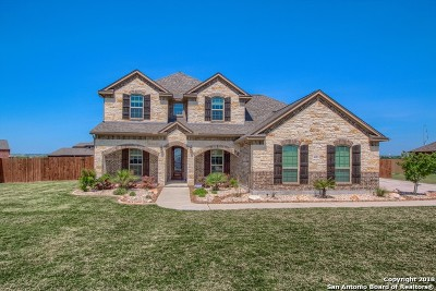 Schertz Single Family Home For Sale: 10213 Ivy Horn