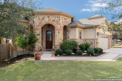 Boerne Single Family Home New: 28111 Vine Cliff