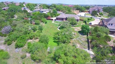 San Antonio Single Family Home For Sale: 21611 Roan Bluff