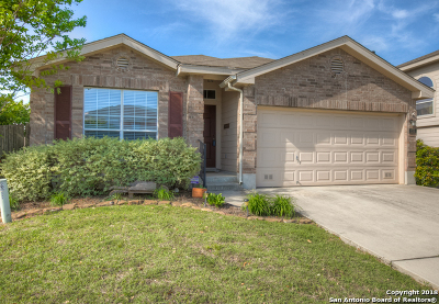 New Braunfels Single Family Home For Sale: 133 Crane Crest Dr