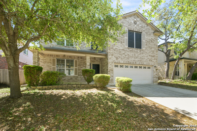 Helotes Single Family Home New: 8206 Eagle Peak