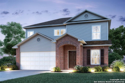 Converse Single Family Home New: 2418 Rainbow Basin