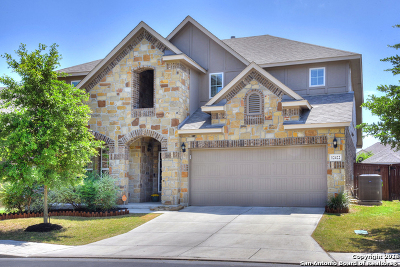 Bexar County Single Family Home For Sale: 12422 Caprock Creek