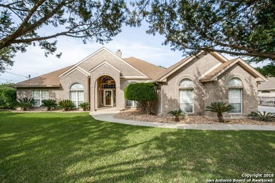 San Antonio Single Family Home New: 514 Spacious Sky