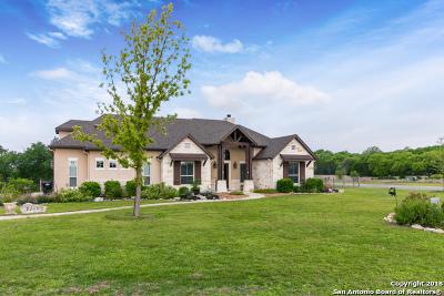 Spring Branch Single Family Home For Sale: 2208 Cascada Pky