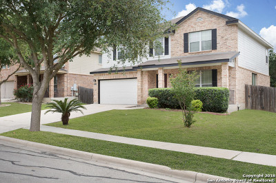 Cibolo Single Family Home New: 121 Earhart Ln
