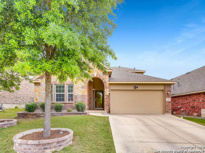 Bexar County Single Family Home New: 12019 Presidio Path