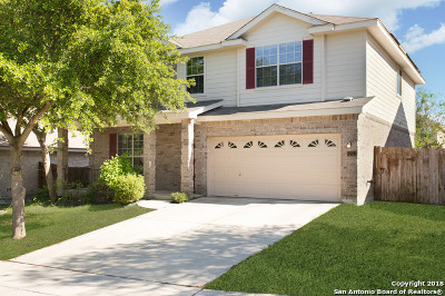 Bexar County Single Family Home New: 12522 Bright Pass